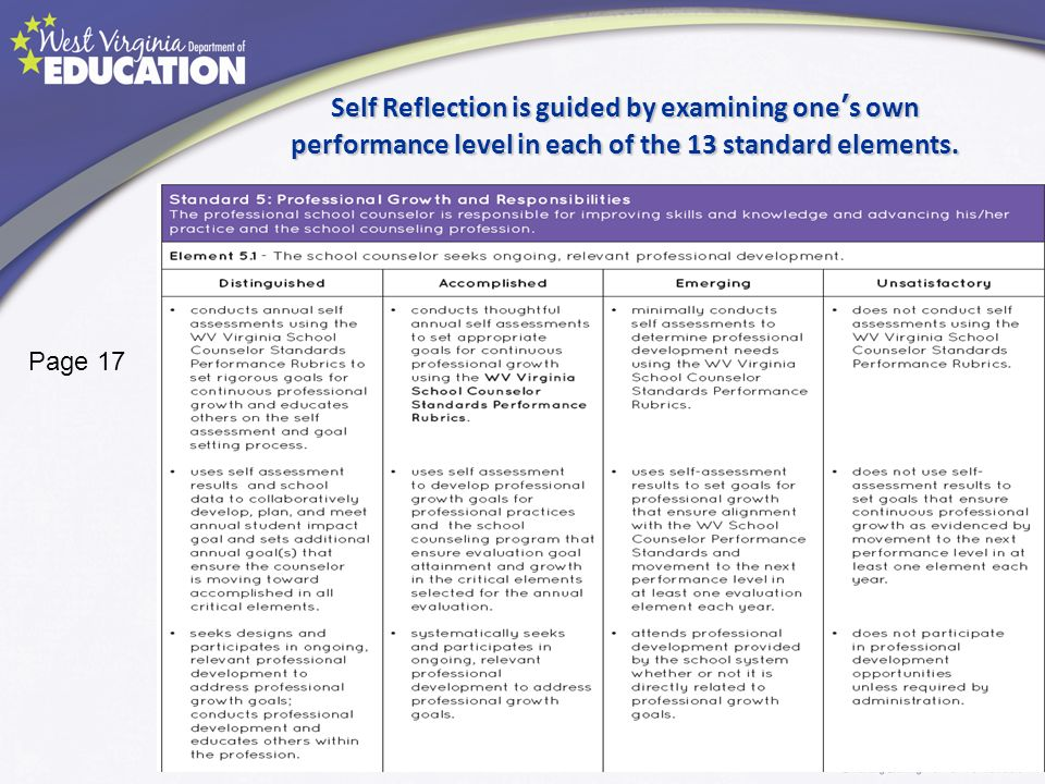 Self Reflection is guided by examining one's own performance level in each of the 13 standard elements.