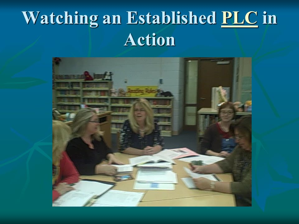 Watching an Established PLC in Action