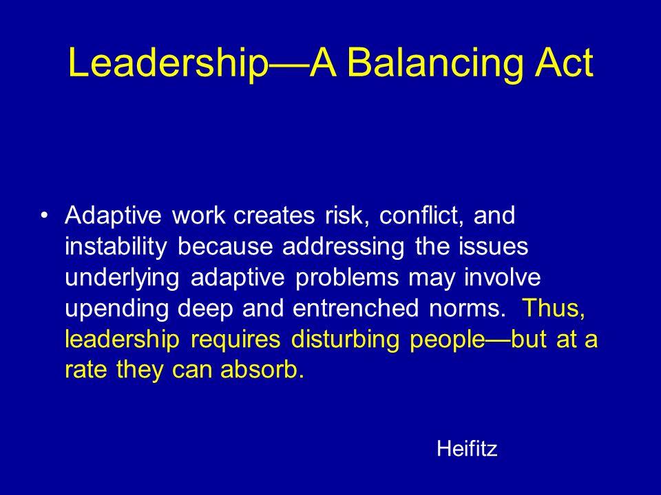 Leadership—A Balancing Act