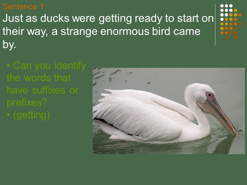 Sentence 1: Just as ducks were getting ready to start on their way, a strange enormous bird came by.