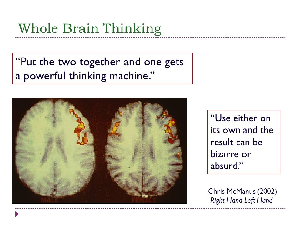 Whole Brain Thinking Put the two together and one gets a powerful thinking machine.