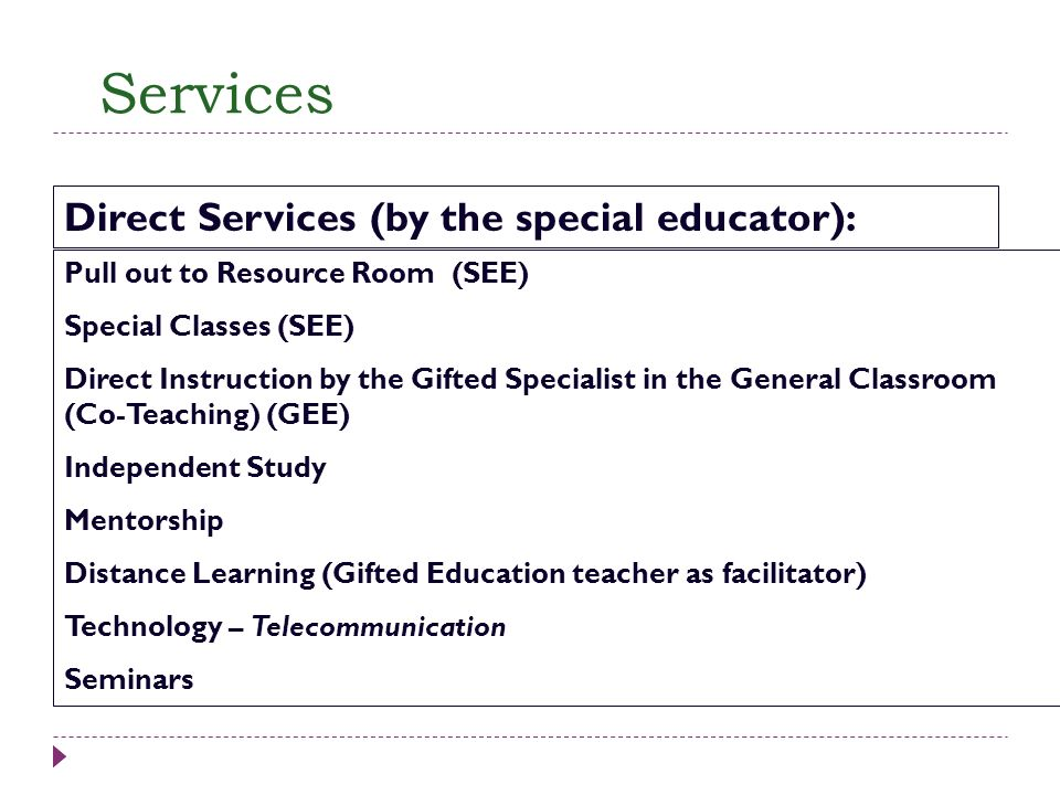 Services Direct Services (by the special educator):