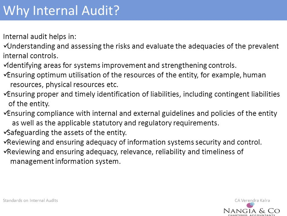 internal audit best practices pdf