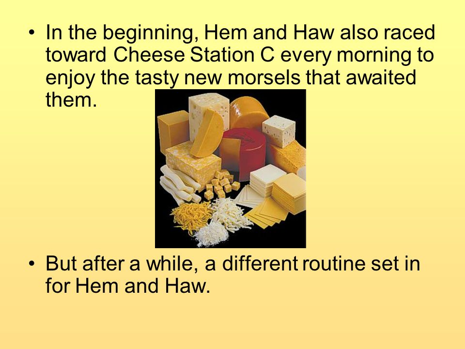 In the beginning, Hem and Haw also raced toward Cheese Station C every morning to enjoy the tasty new morsels that awaited them.