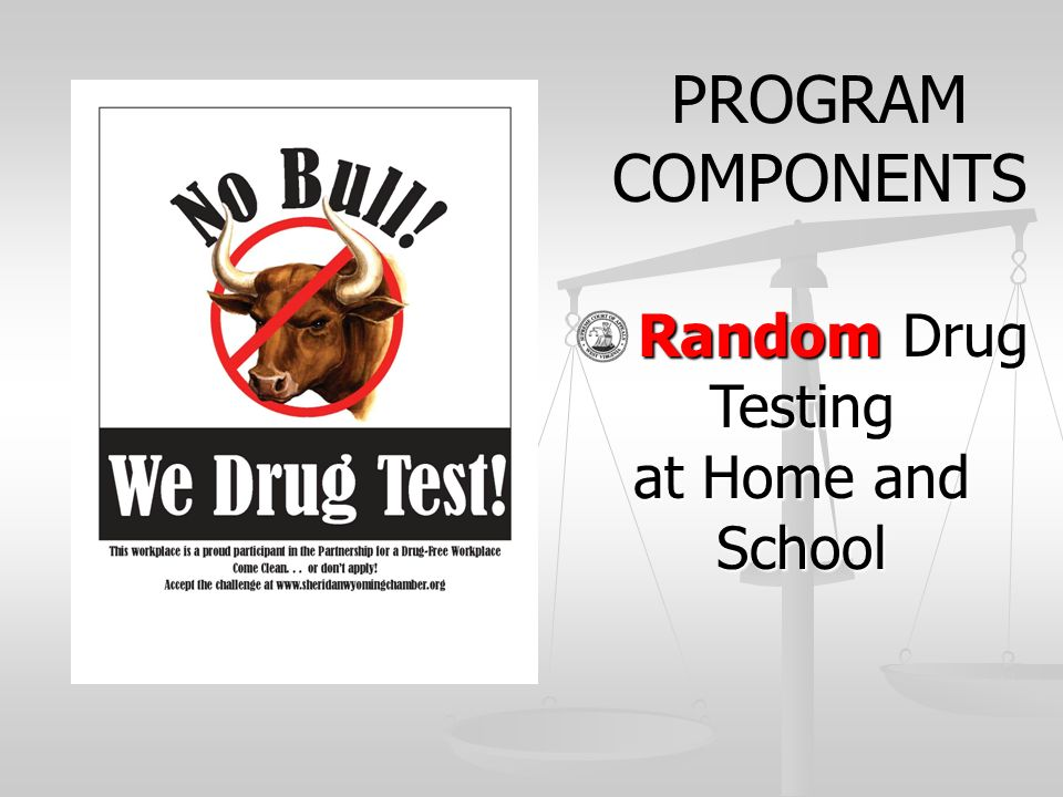 PROGRAM COMPONENTS Random Drug Testing at Home and School