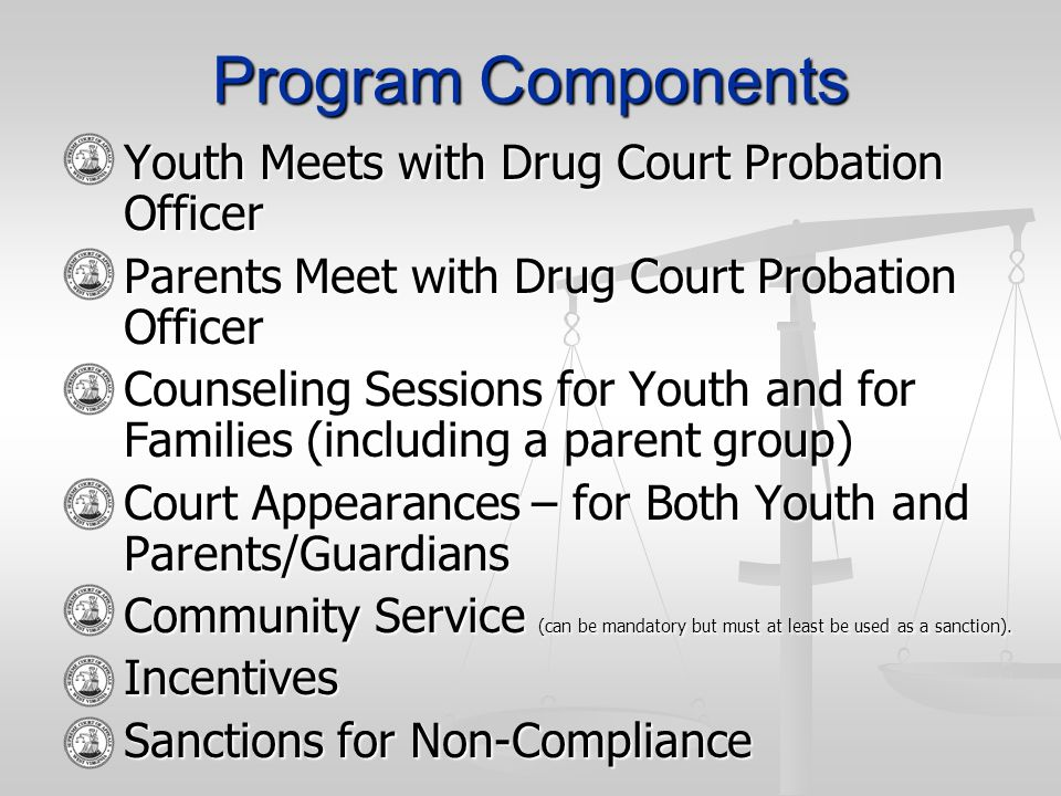 Program Components Youth Meets with Drug Court Probation Officer