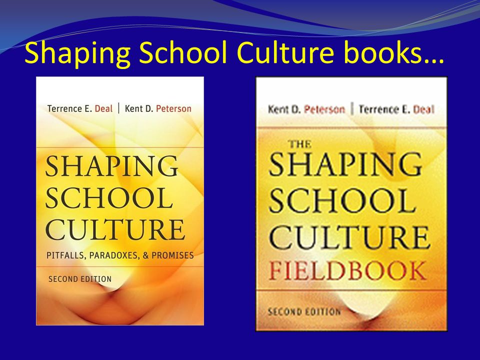 Shaping School Culture books…