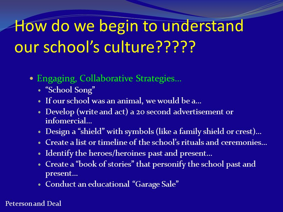 How do we begin to understand our school's culture