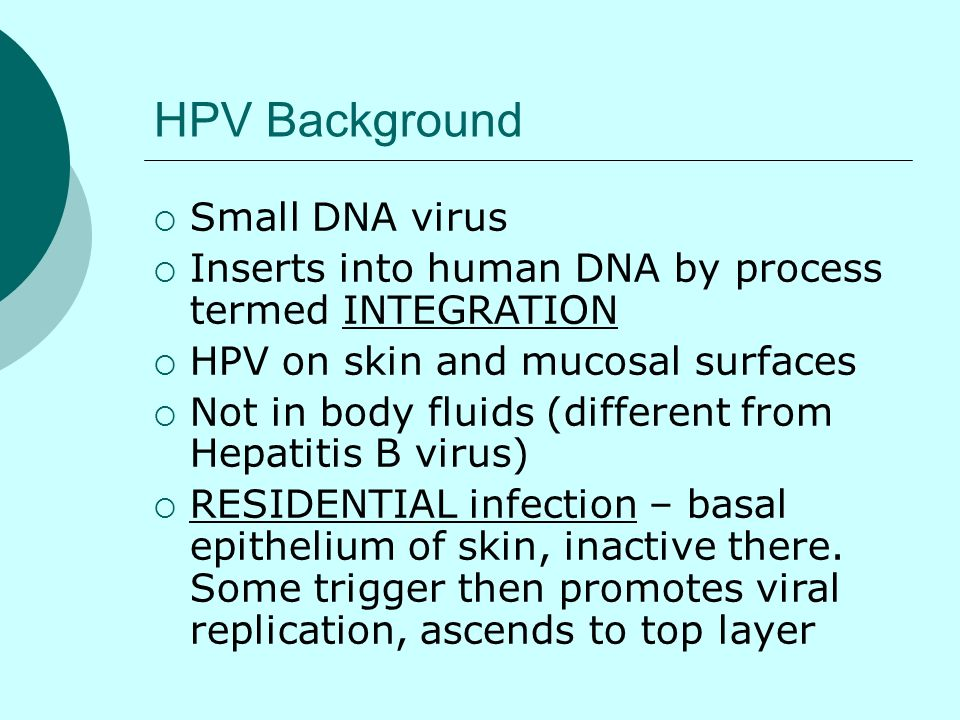 HPV Background Small DNA virus
