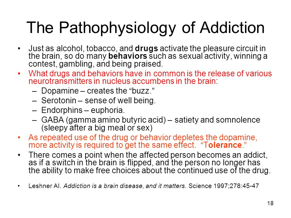 The Pathophysiology of Addiction