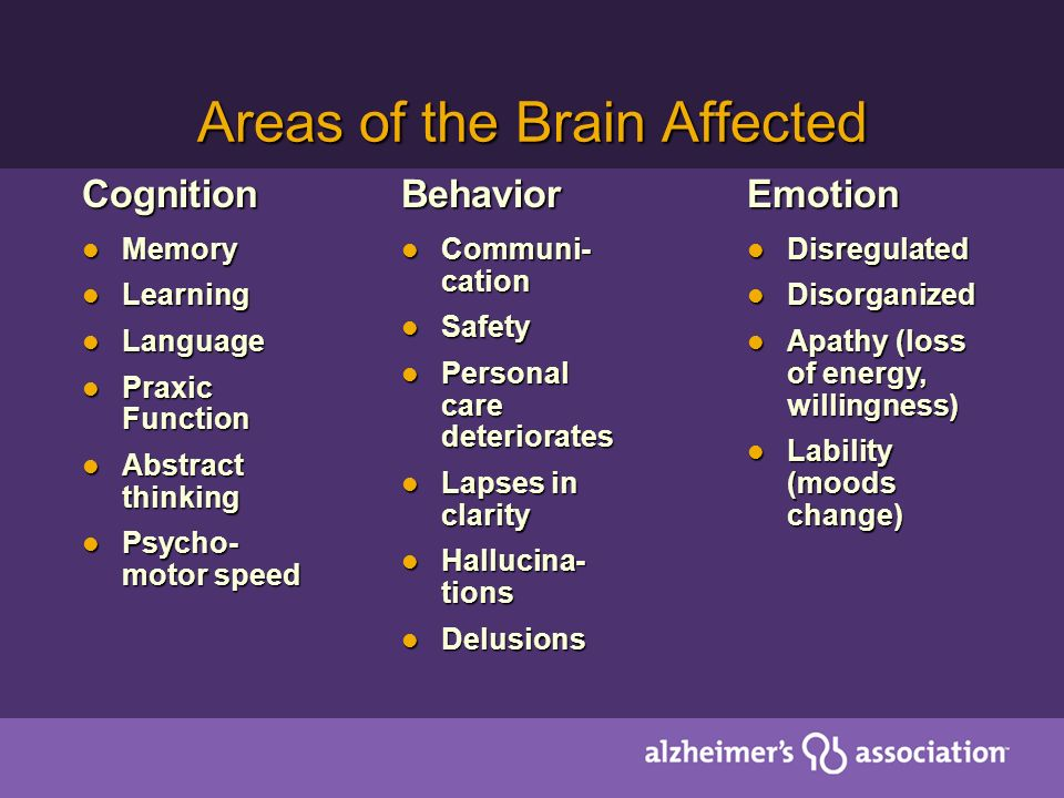 Areas of the Brain Affected