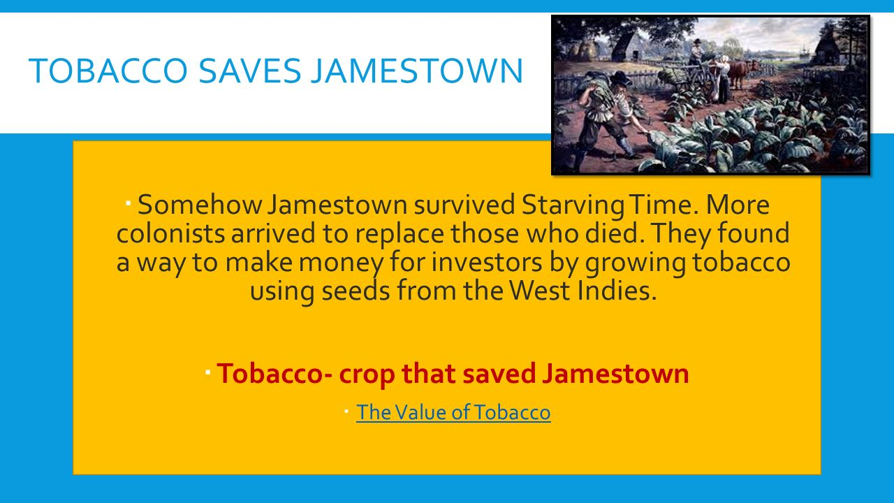 worksheet Jamestown Worksheet early colonies chapter 3 lesson ppt download tobacco saves jamestown