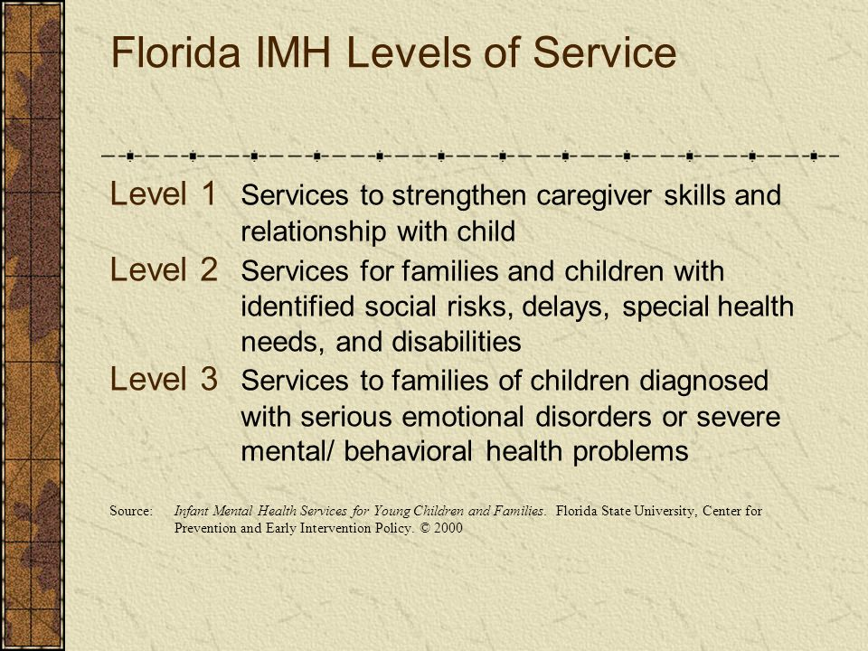 Florida IMH Levels of Service