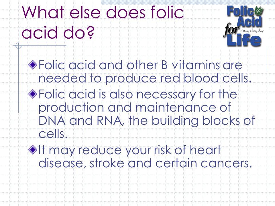 What else does folic acid do