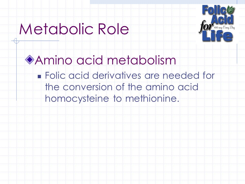 Metabolic Role Amino acid metabolism