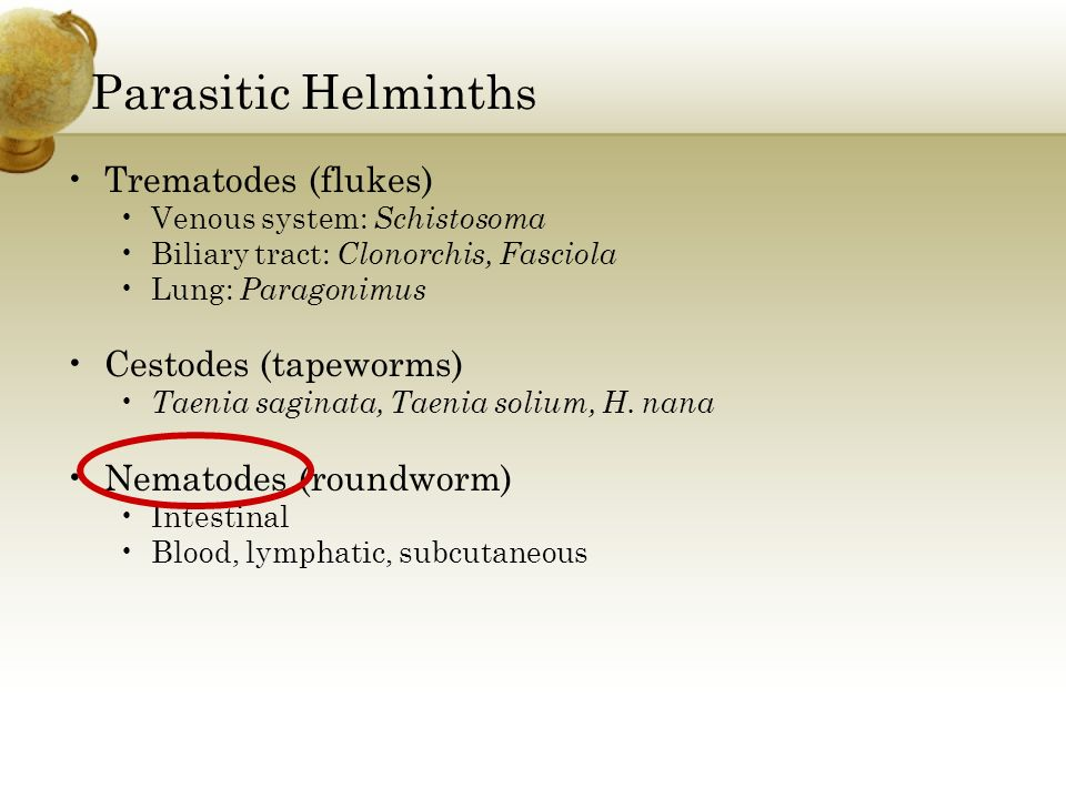 Parasitic Helminths Trematodes (flukes) Cestodes (tapeworms)