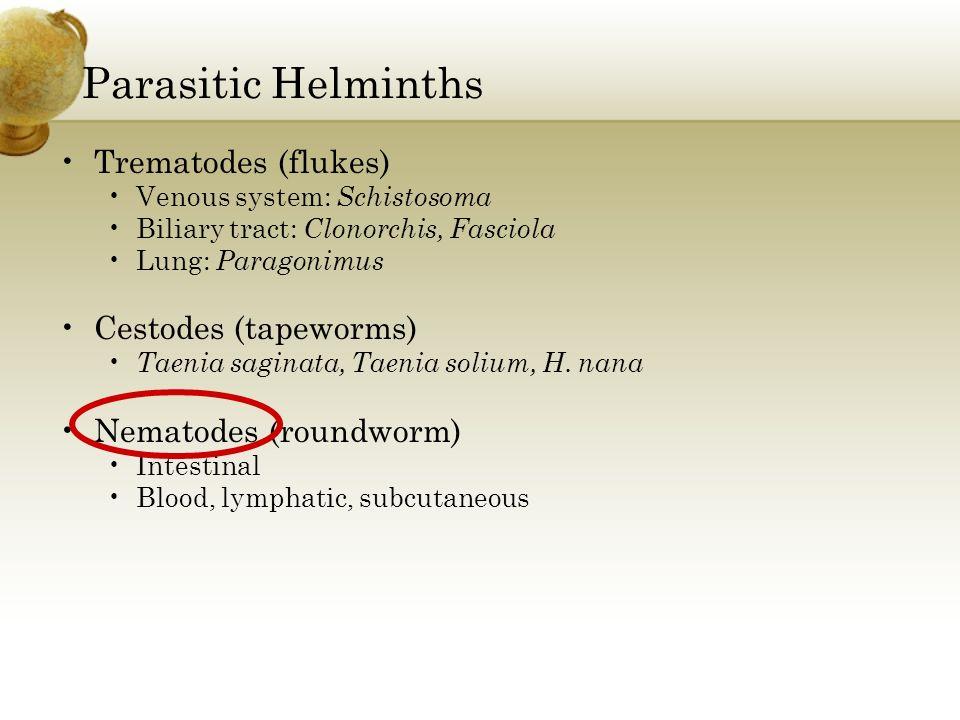 Parasitic Helminths Trematodes (flukes) Cestodes (tapeworms)