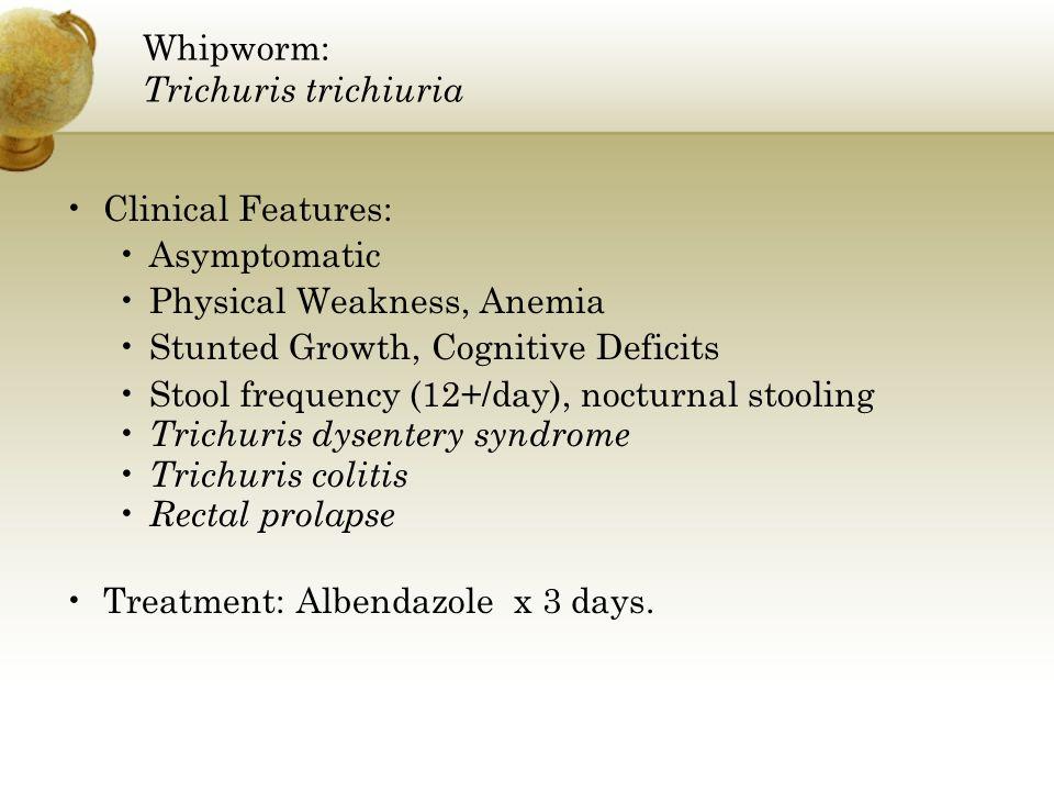 Whipworm: Trichuris trichiuria