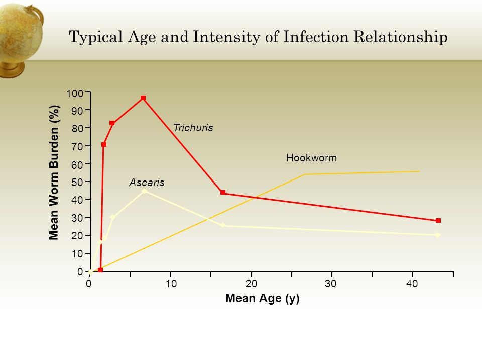 Typical Age and Intensity of Infection Relationship