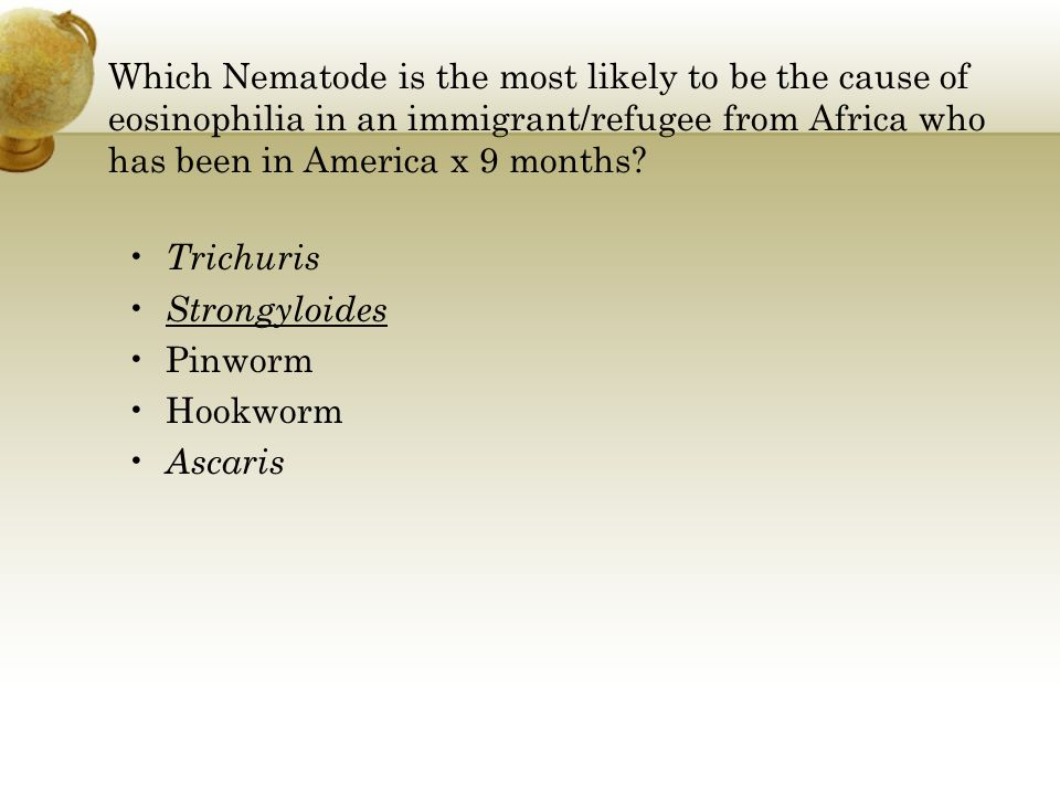 Which Nematode is the most likely to be the cause of eosinophilia in an immigrant/refugee from Africa who has been in America x 9 months