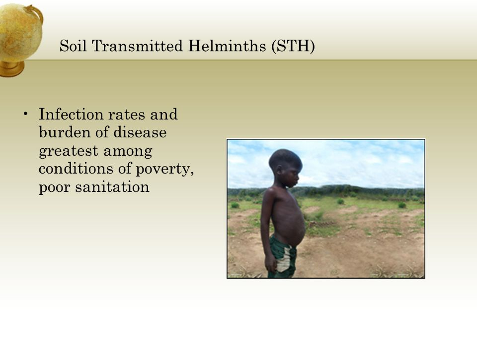 Soil Transmitted Helminths (STH)