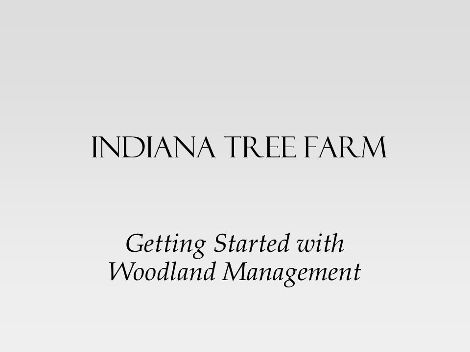 Getting Started with Woodland Management