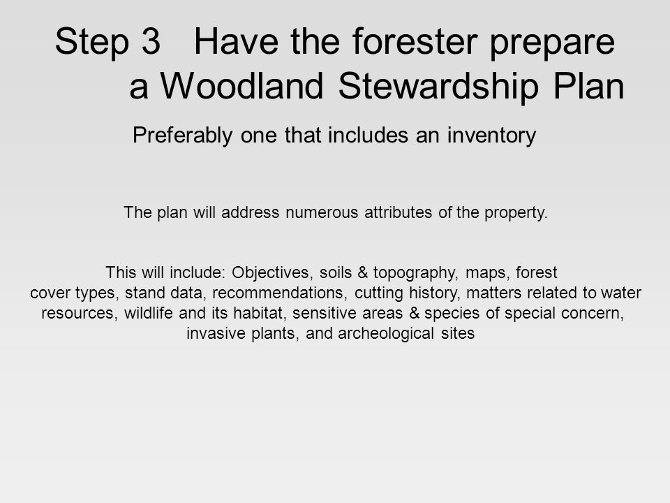Step 3 Have the forester prepare a Woodland Stewardship Plan