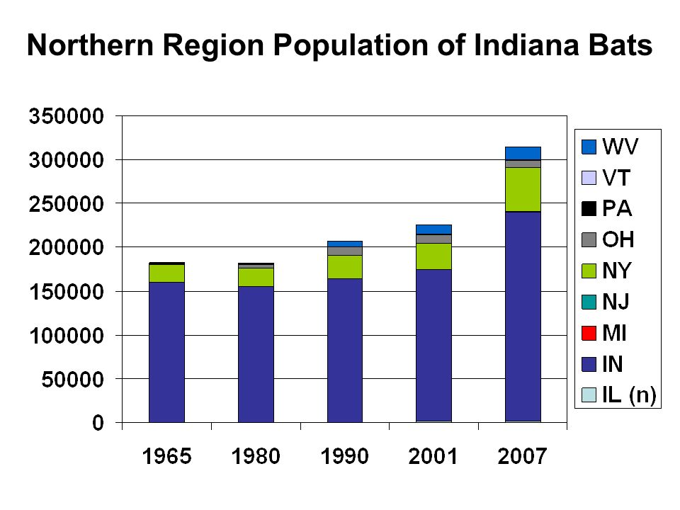 Northern Region Population of Indiana Bats