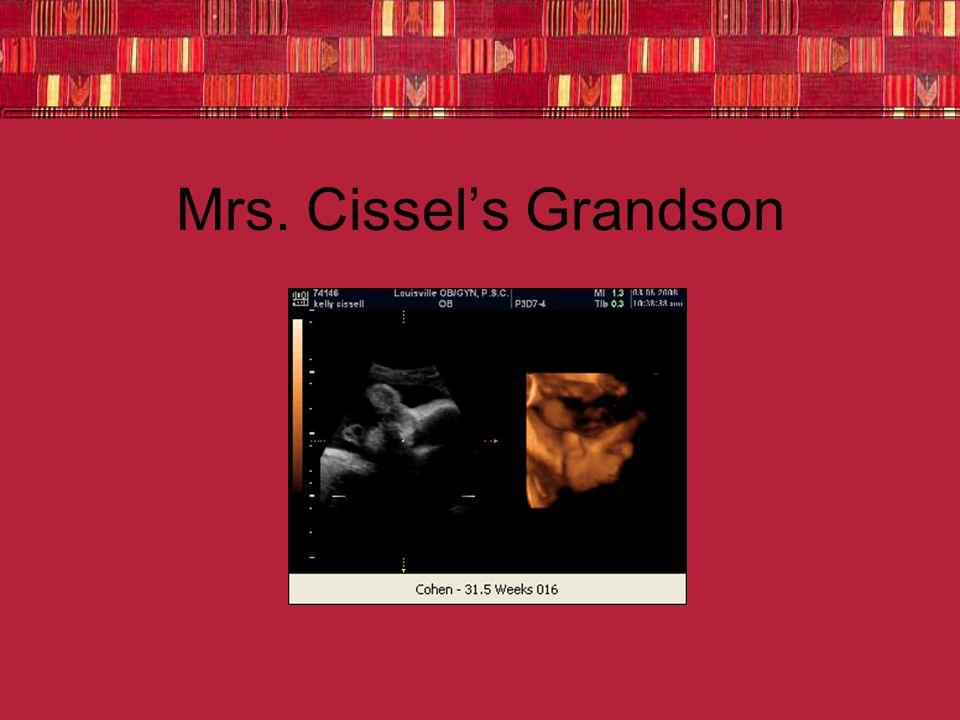 Mrs. Cissel's Grandson