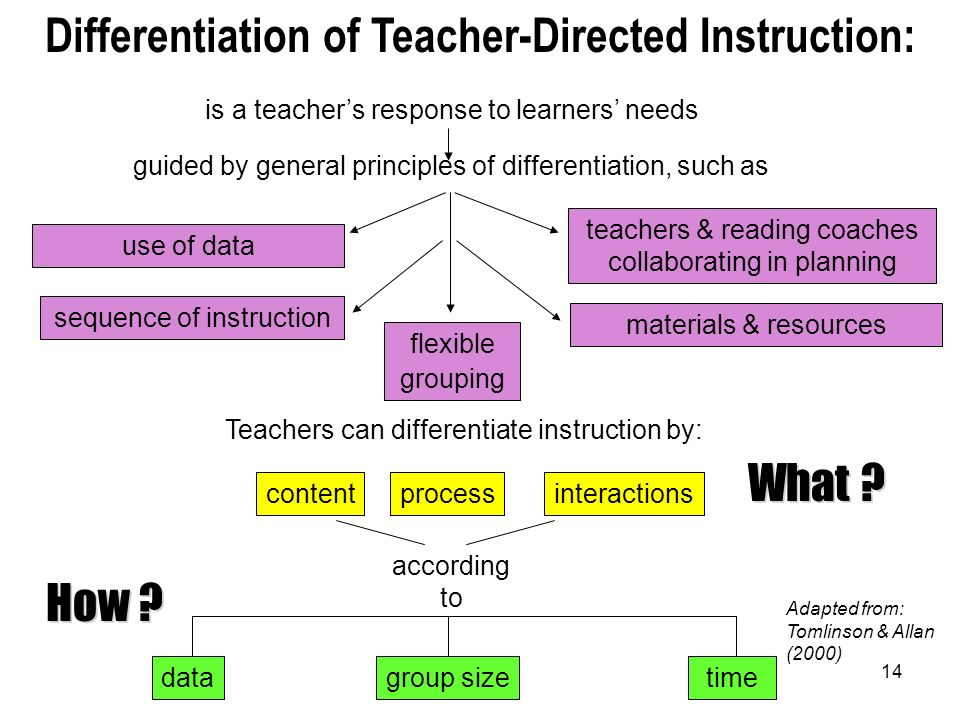 Differentiation of Teacher-Directed Instruction:
