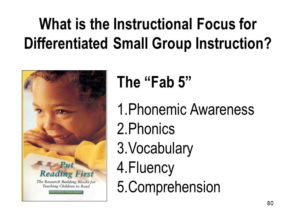 What is the Instructional Focus for Differentiated Small Group Instruction