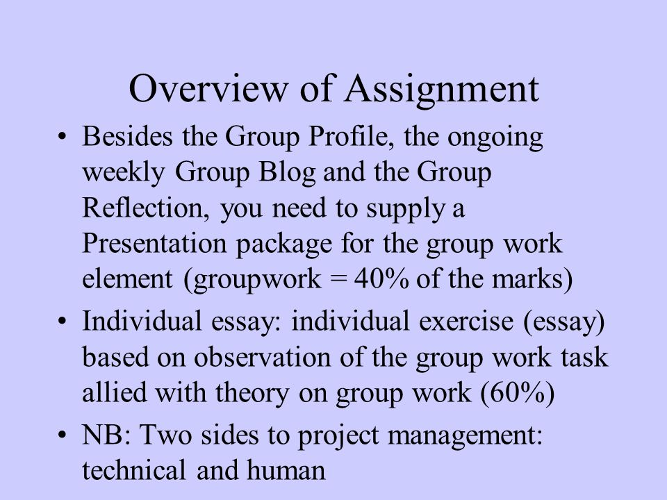 motivation and teamworking ppt video online  5 overview of assignment