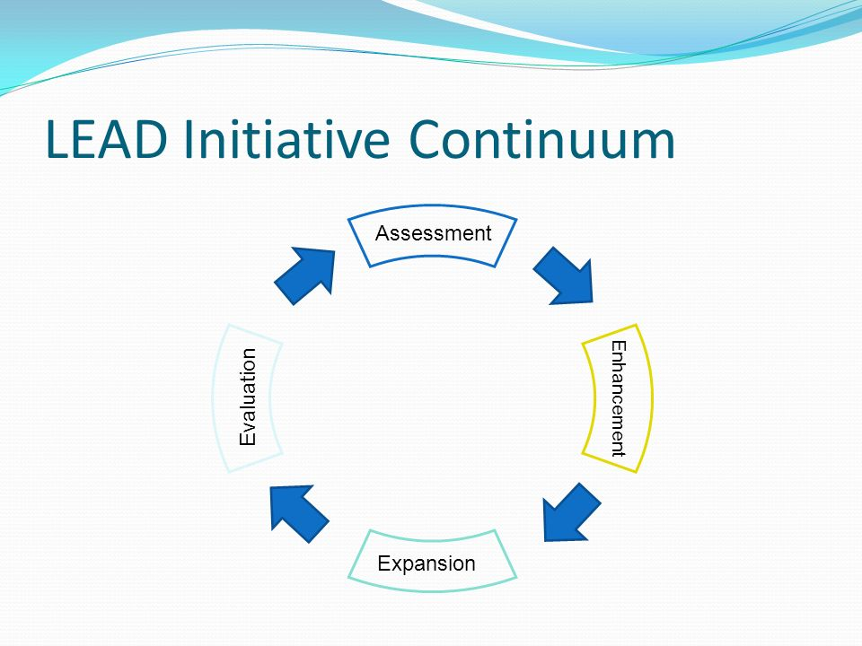 LEAD Initiative Continuum