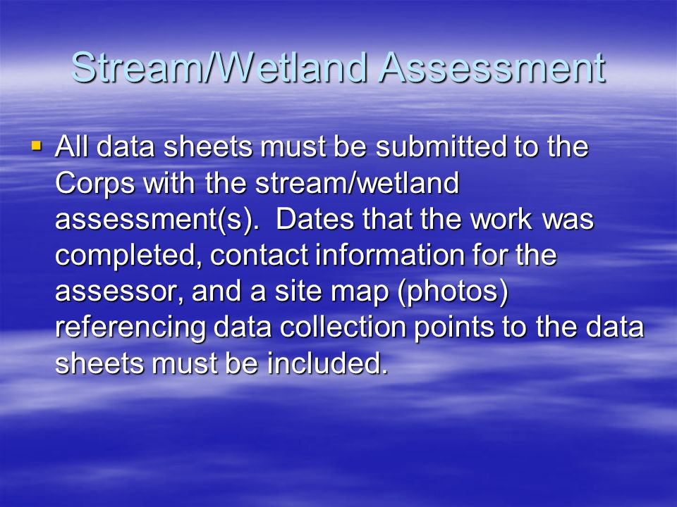Stream/Wetland Assessment