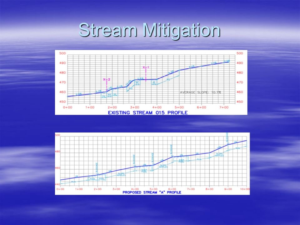 Stream Mitigation