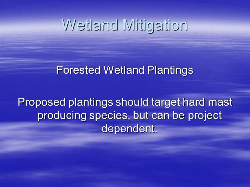 Forested Wetland Plantings
