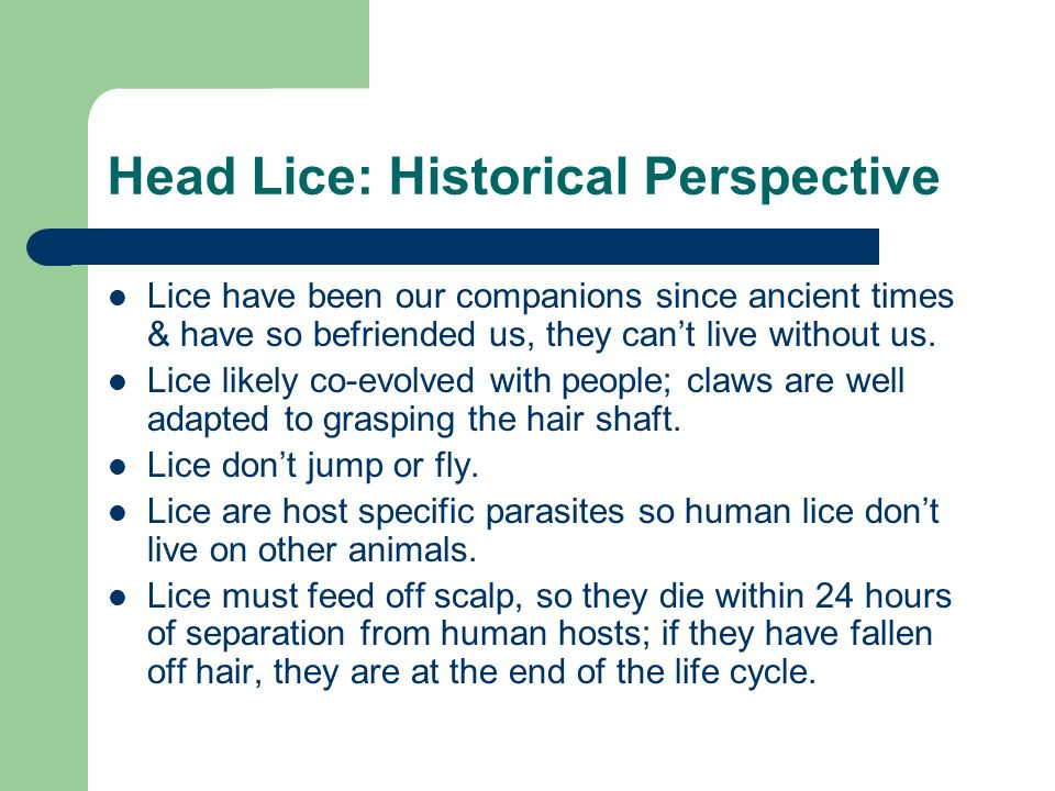 Head Lice: Historical Perspective