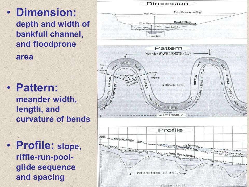 Dimension: depth and width of bankfull channel, and floodprone area