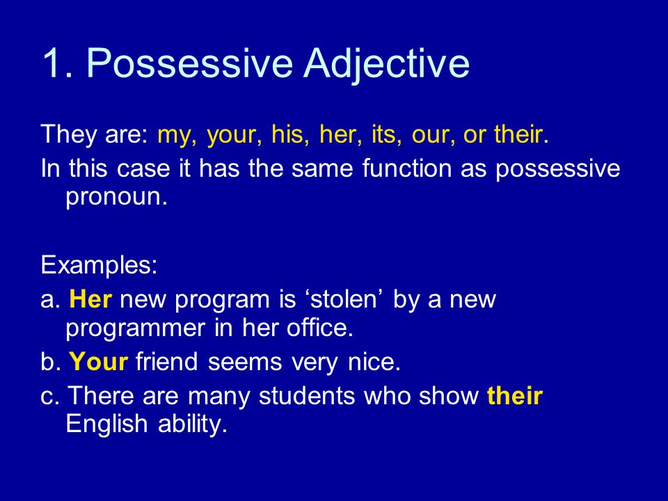 1. Possessive Adjective They are: my, your, his, her, its, our, or their. In this case it has the same function as possessive pronoun.