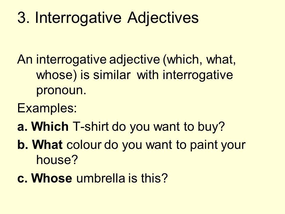3. Interrogative Adjectives