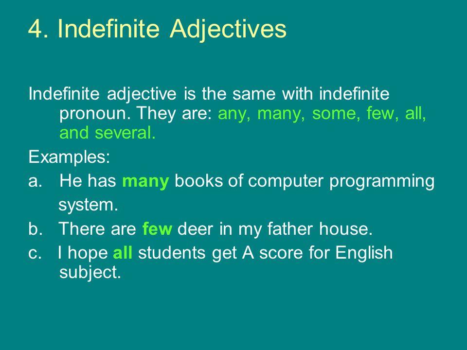 4. Indefinite Adjectives