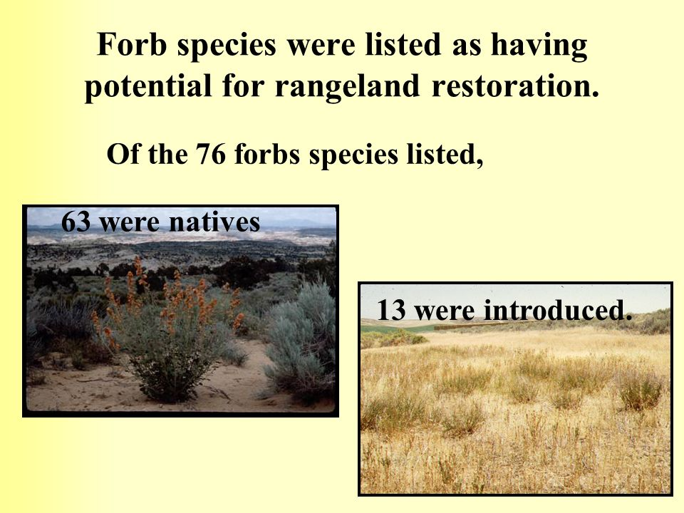 Forb species were listed as having potential for rangeland restoration.