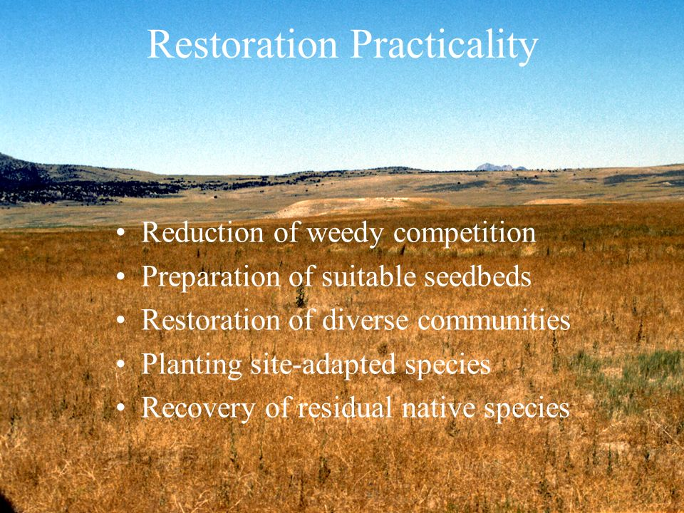 Restoration Practicality
