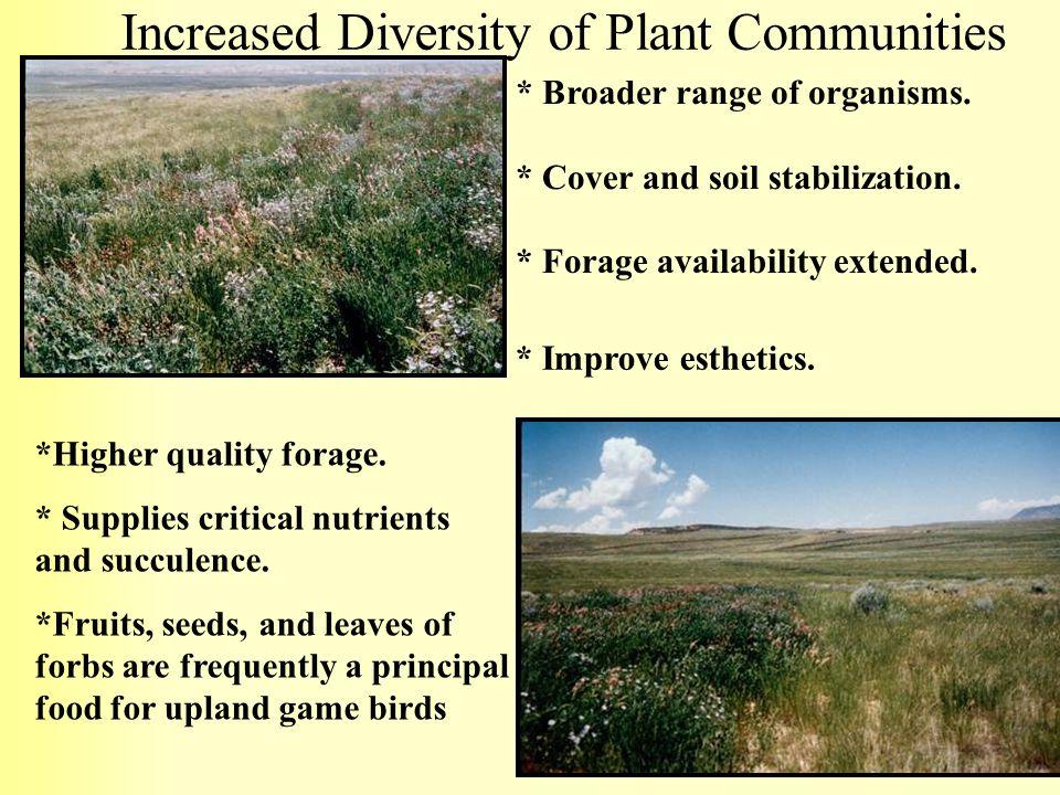Increased Diversity of Plant Communities