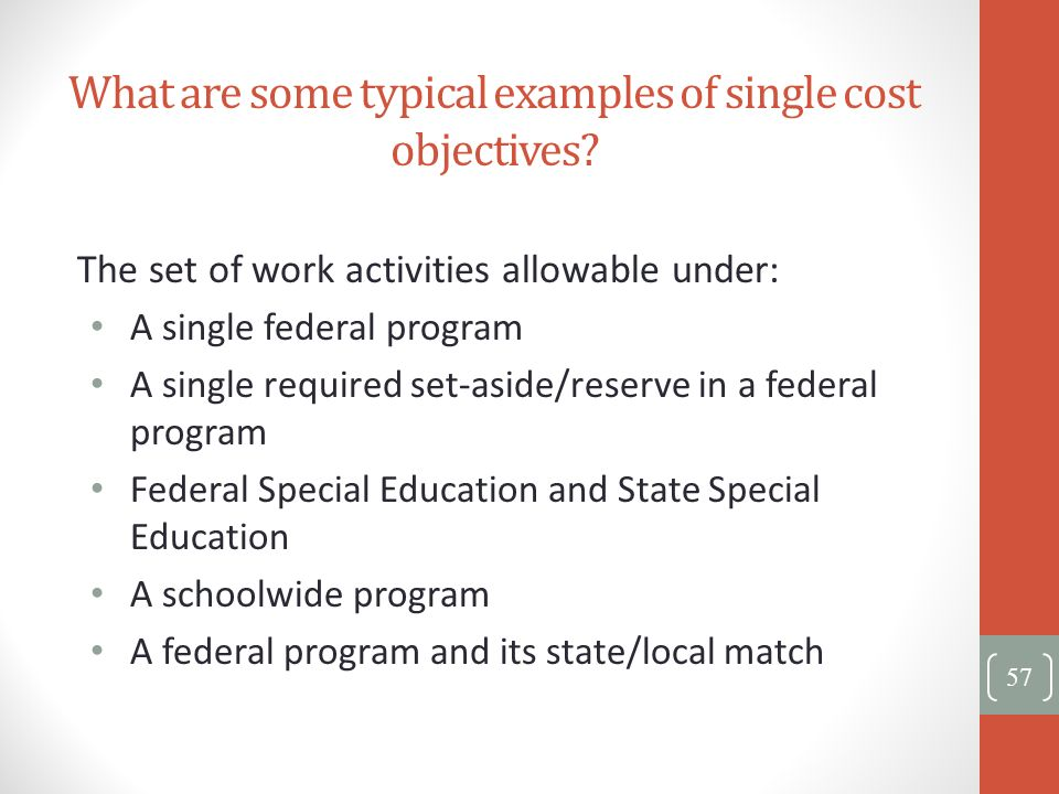 What are some typical examples of single cost objectives