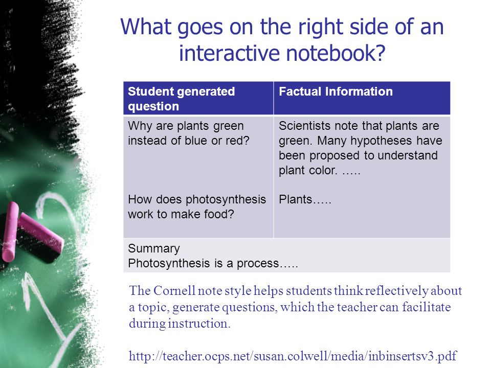 What goes on the right side of an interactive notebook