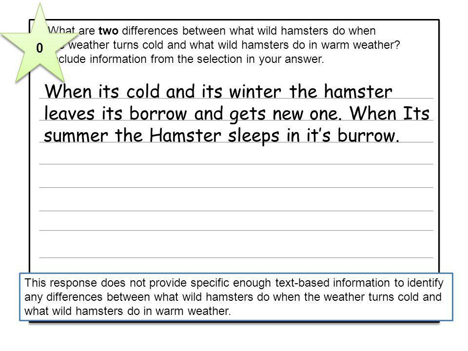 When its cold and its winter the hamster