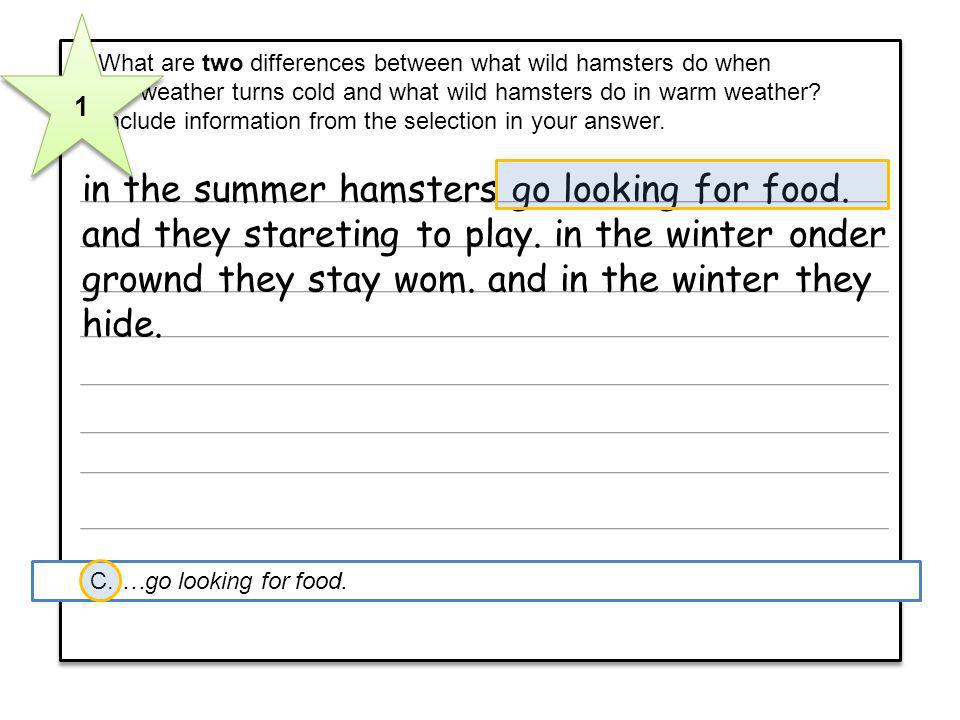 1 7 What are two differences between what wild hamsters do when. the weather turns cold and what wild hamsters do in warm weather