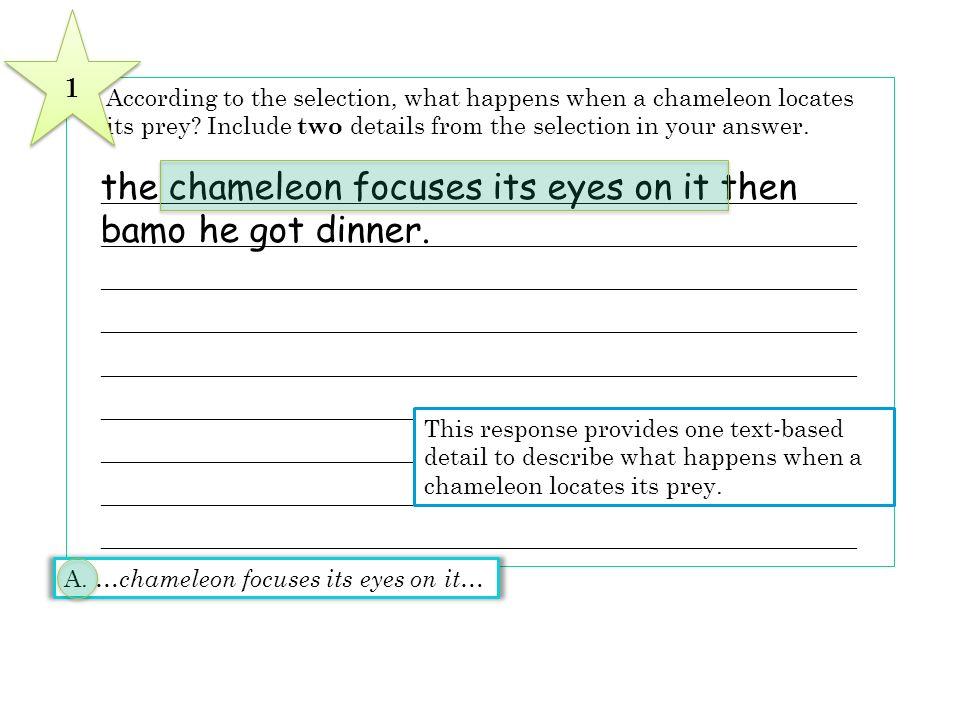 the chameleon focuses its eyes on it then bamo he got dinner.