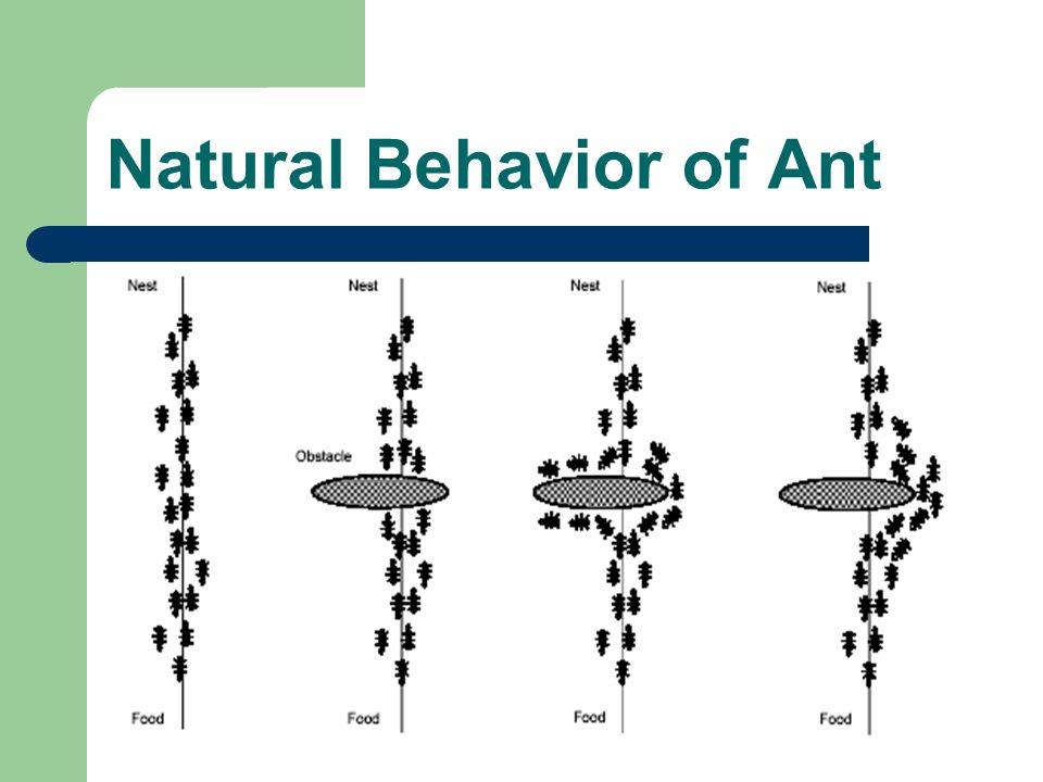 Swarm Intelligence ș�台文 Ppt Video Online Download